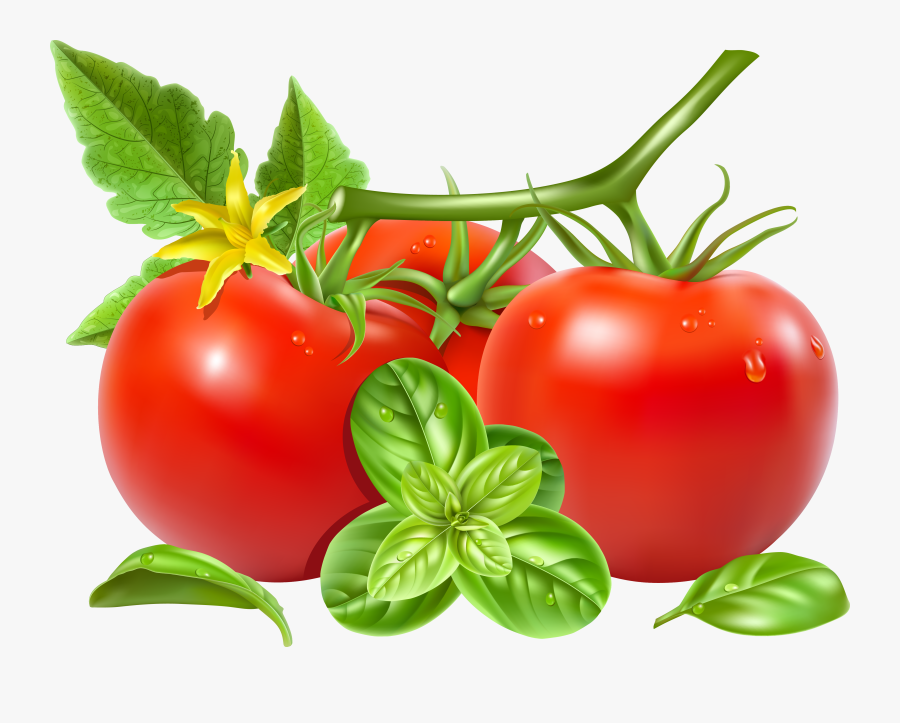 San Marzano Tomato Royalty - Tomato With Green Leaves, Transparent Clipart