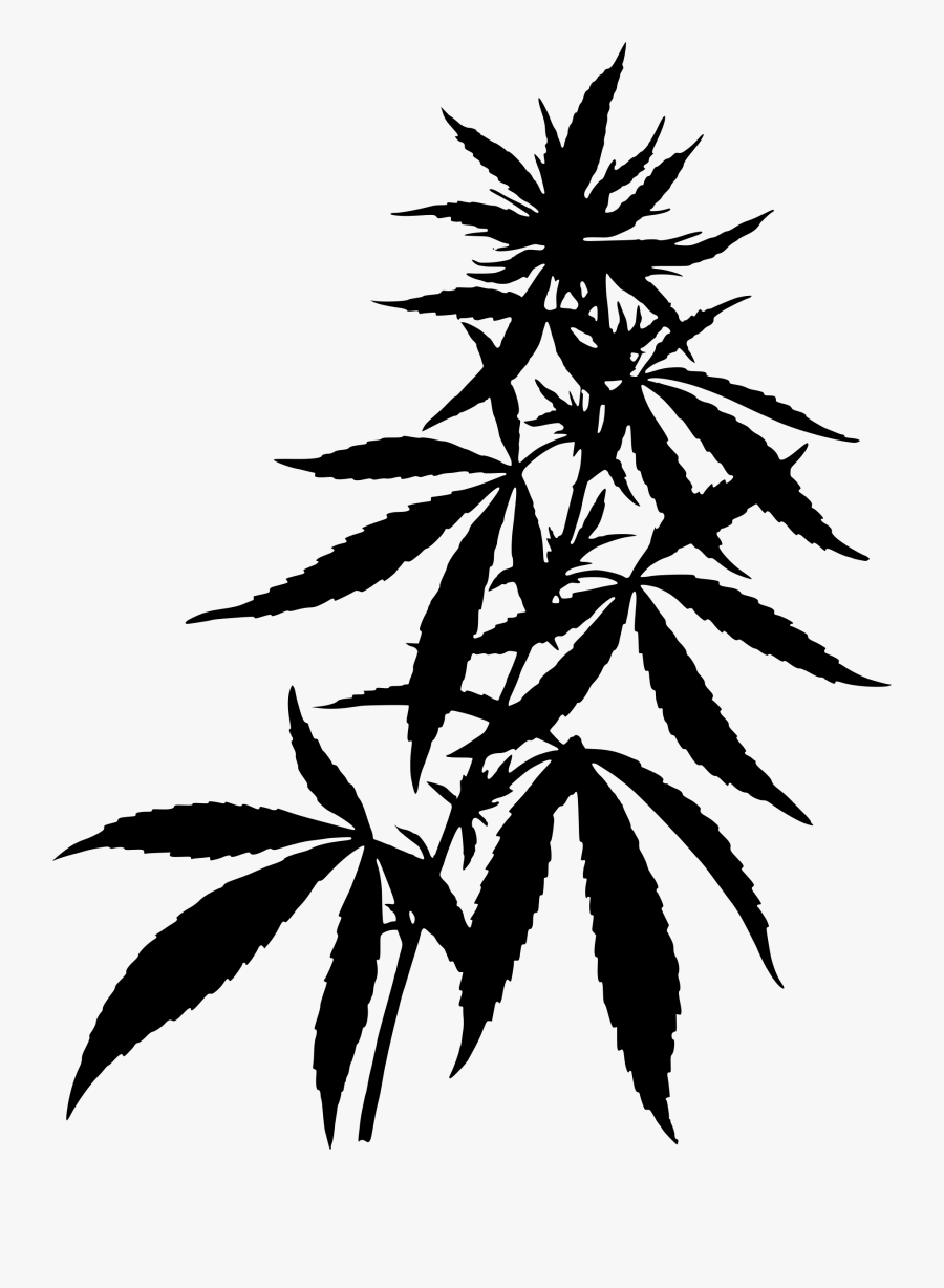 Transparent Weed Joint Clipart - Marijuana Plant, Transparent Clipart