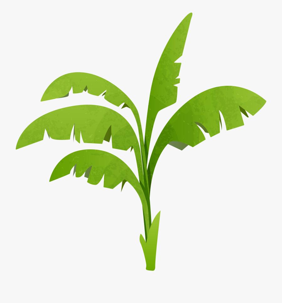 Plant Clipart Green - Plant Clip Art Png, Transparent Clipart