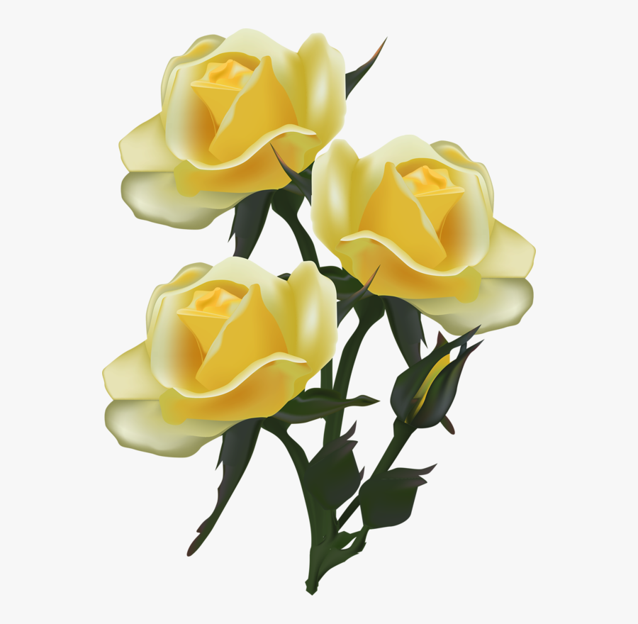 Transparent Yellow Rose Clipart - Clipart Dover Yellow Rose, Transparent Clipart