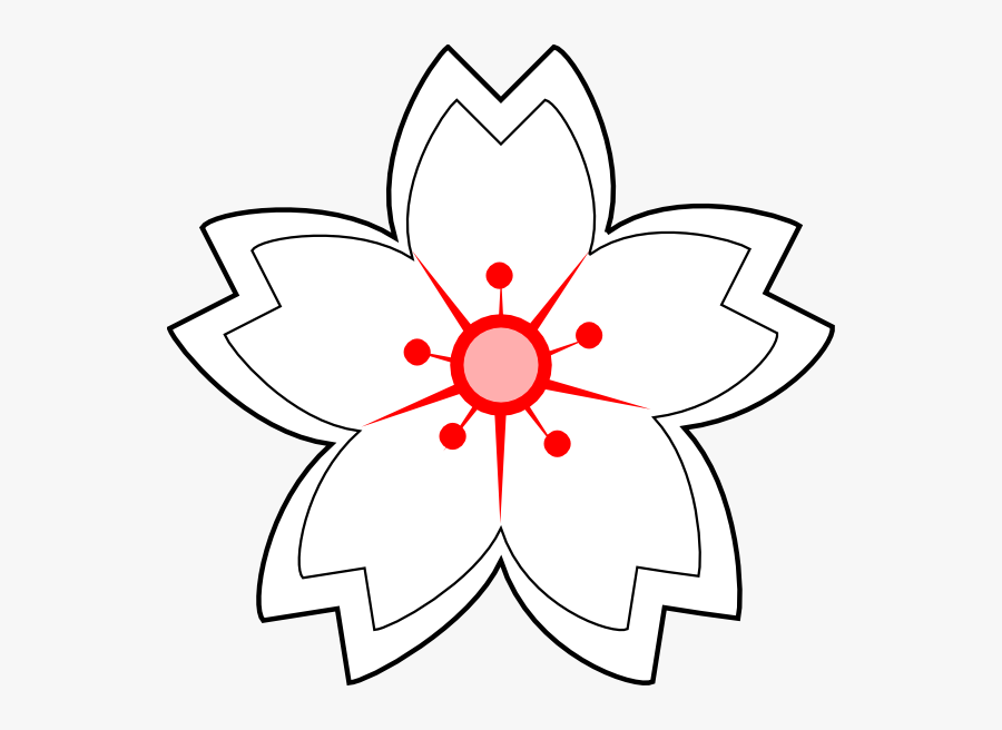 Transparent Flower Drawing Clipart - White Sakura Flower Sketch, Transparent Clipart