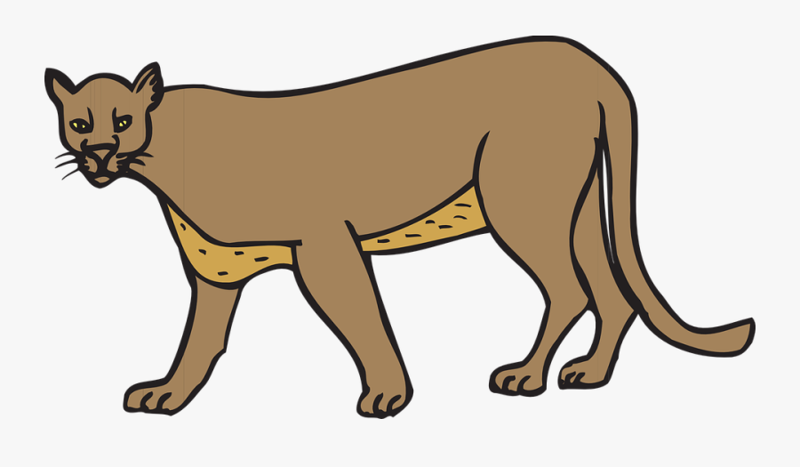 Cat Walking Animal Cougar Panther Wildlife Feline - Clipart Cougar, Transparent Clipart