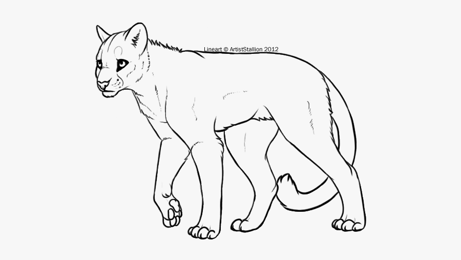 Clip Art Lion Art Cat Whiskers - Mountain Lion Art Oc, Transparent Clipart