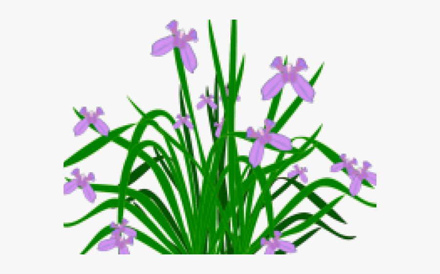 Bushes Clipart Plant - Plant Garden Free Png, Transparent Clipart