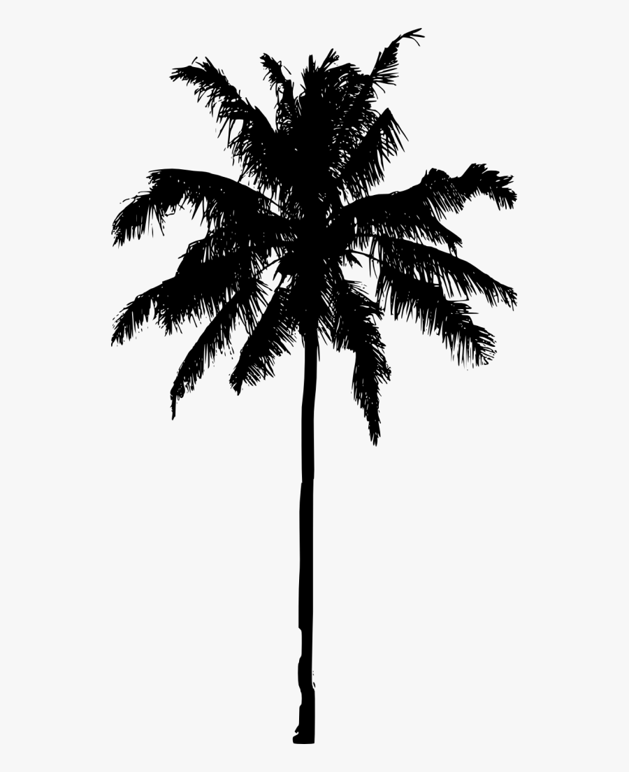 Clip Art Tree Silhouette Png - Palm Tree Silhouette Png, Transparent Clipart