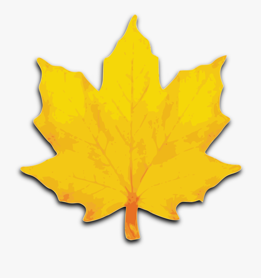 Leaf Fall Leaves Clipart Free Clipart Images - Maple Tree Leaves Clip Art, Transparent Clipart