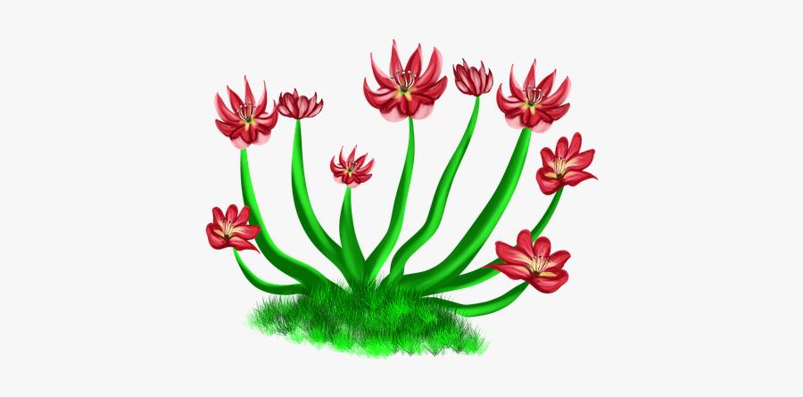 Flowers Red, Red Flower, Nature, Bushes, River, Levee - Floral Design, Transparent Clipart