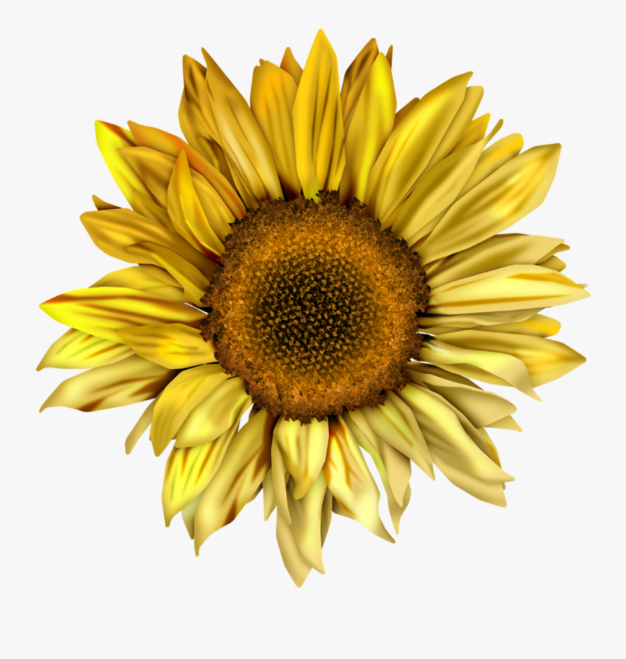 Clipart Royalty Free Sunflowers Clipart Swag - You Are My ...