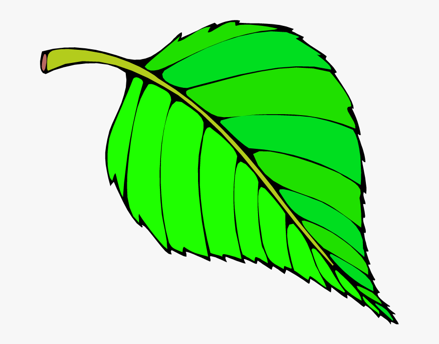 Free Big Leaves Cliparts - Hungry Caterpillar Green Leaf, Transparent Clipart