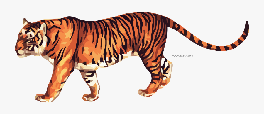 True Tiger Clipart Png Image Www Animated Picture - Animated Picture Of A Tiger, Transparent Clipart