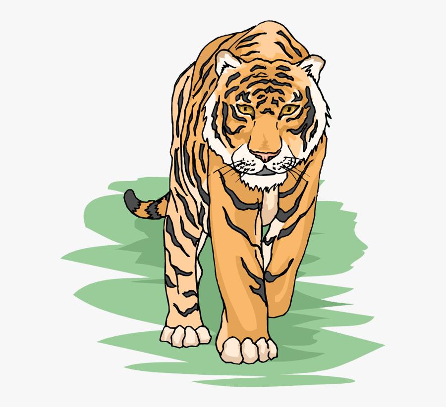 Tiger Clipart Tiger Animals Clip Art - Transparent Background Tiger Clipart, Transparent Clipart