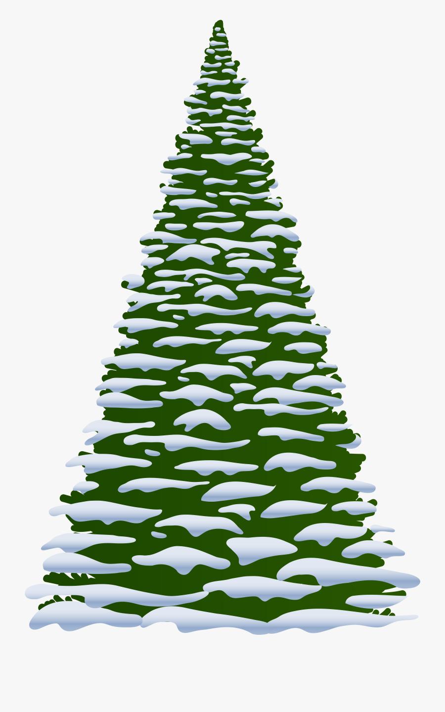 Pine Tree Clip Art Wedding Clipart - Winter Pine Tree Clipart, Transparent Clipart