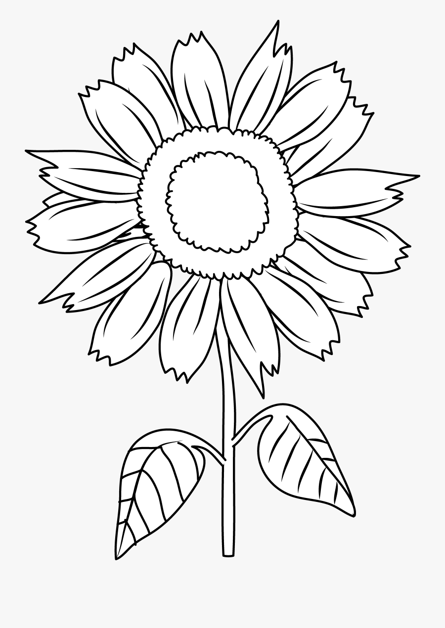 Sunflower Clipart Leaf - Sunflower Vector Png Black And ...