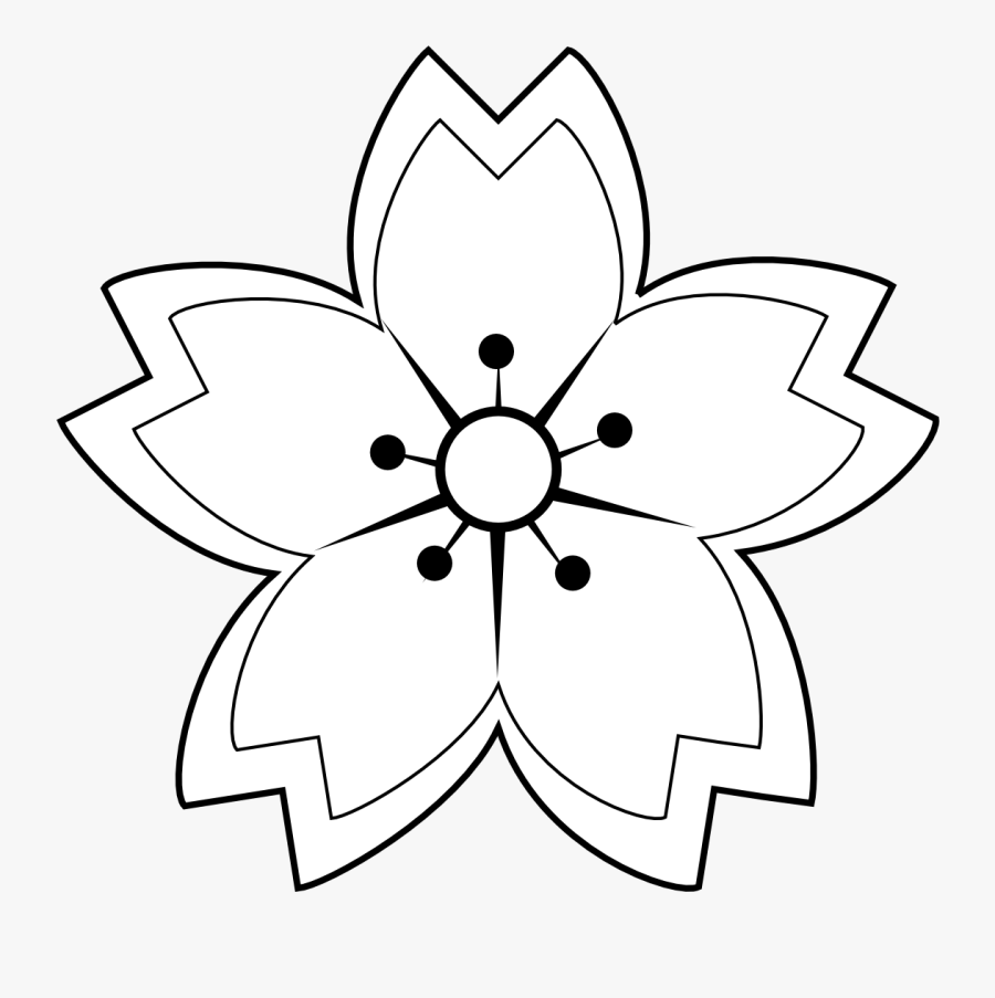 Flower, Petals, Star, Symetry - White Sakura Flower Sketch, Transparent Clipart