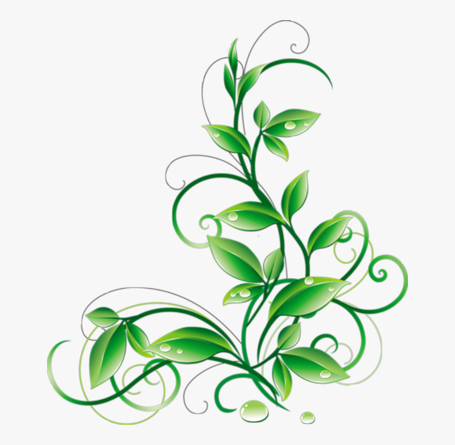 Floral Green Leaves And Water Droplets Png Clipart - Green Corner Border Design, Transparent Clipart