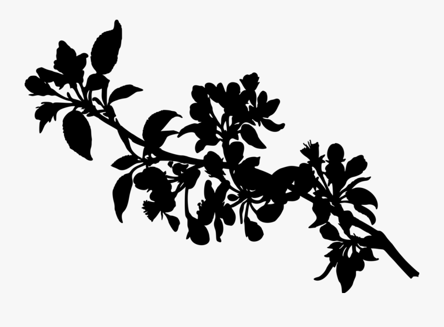 Apple Tree - Apple Tree Branch Silhouette, Transparent Clipart