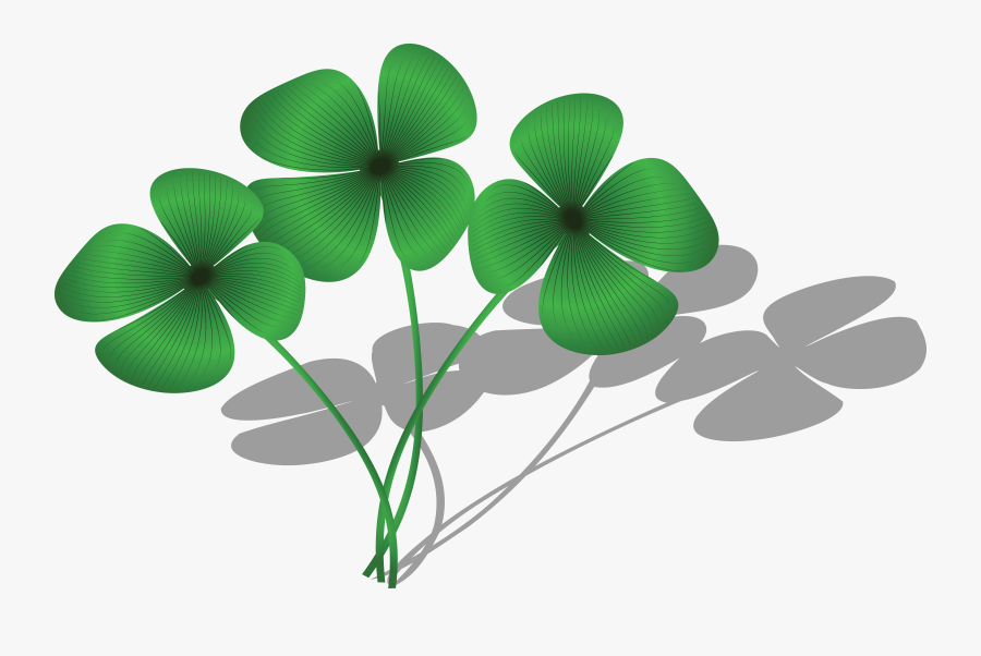 Free Of A Trio - Clovers Clipart, Transparent Clipart