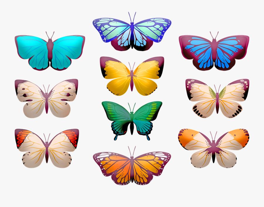 Butterfly Clip Art, Butterflies, Insect, Butterfly - Clip Art Butterfly, Transparent Clipart