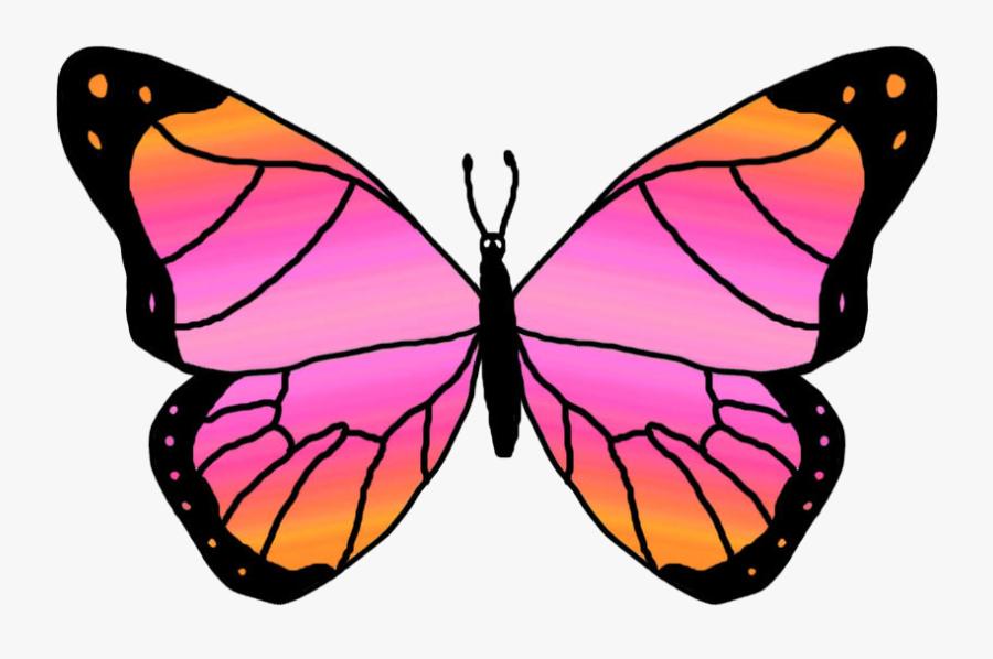 Butterflies Cartoon Butterfly Clipart - Pink And Orange Butterfly, Transparent Clipart