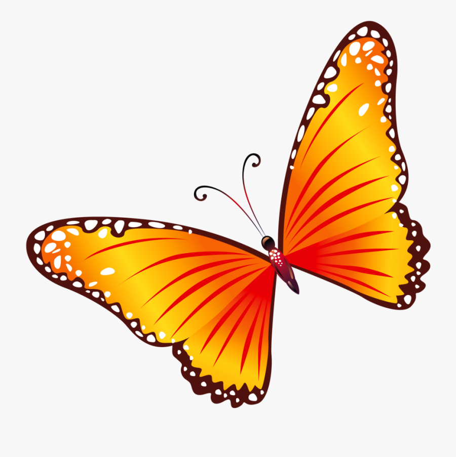 Butterfly Clipart Png, Transparent Clipart