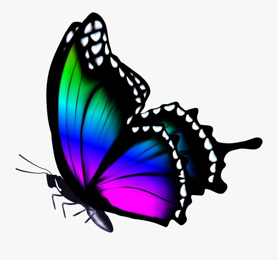 Butterfly Clipart Png Clip - Colorful Clip Art Butterfly, Transparent Clipart