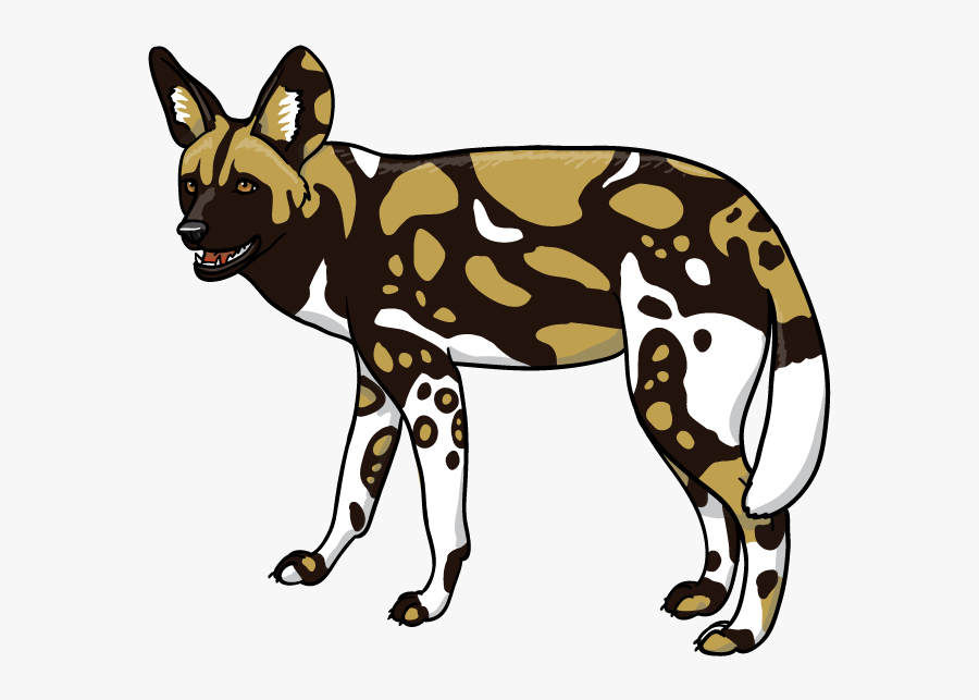 Download Africa Wild Animal - African Wild Dog Clipart, Transparent Clipart