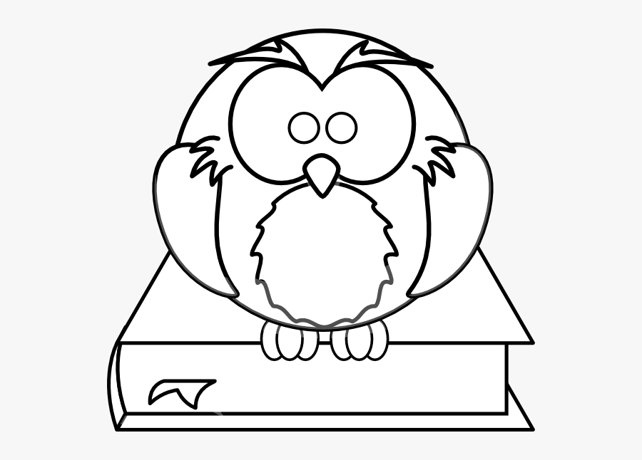 - Owl - Book - Clipart - High Resolution Coloring Book , Free Transparent  Clipart - ClipartKey