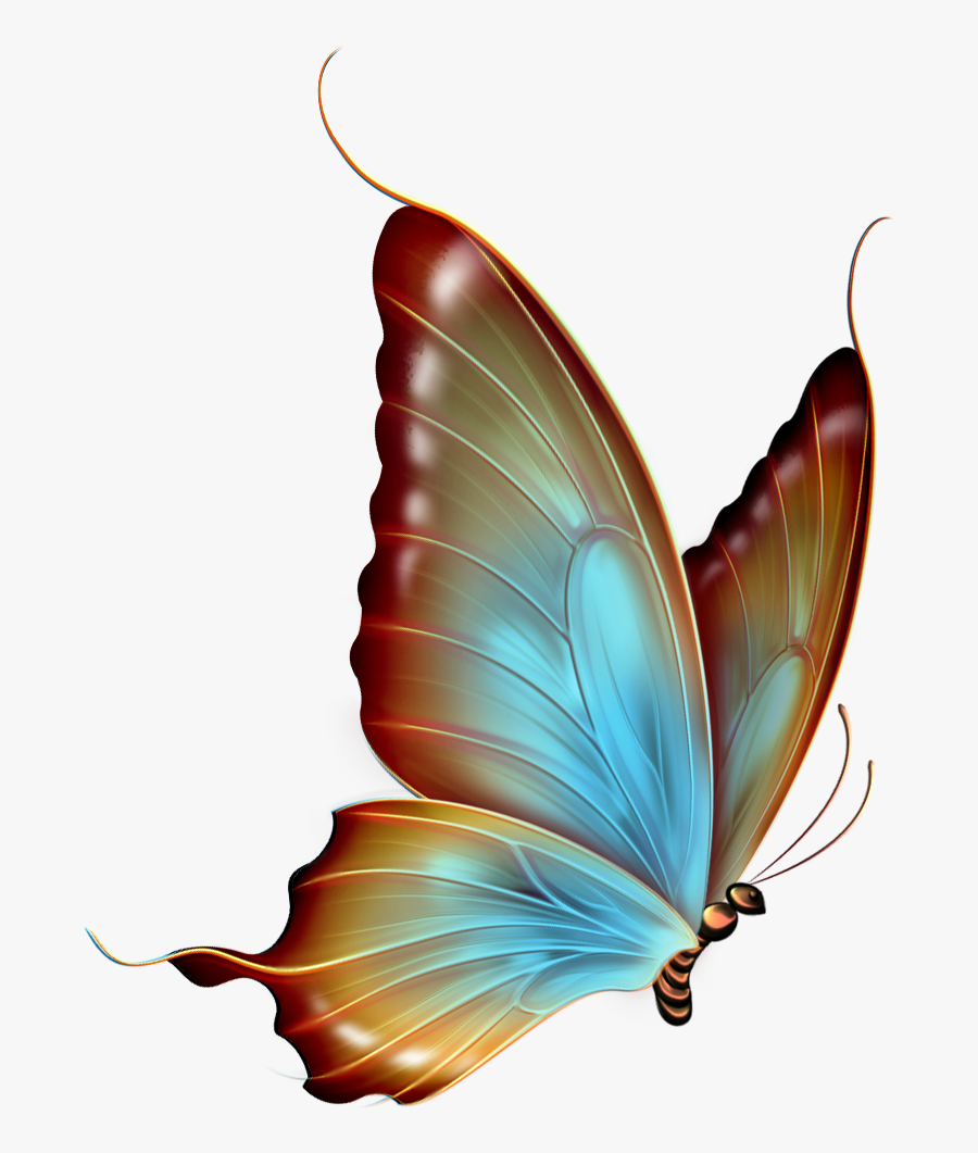 Brown And Blue Transparent Butterfly Clipart - Transparent Background Butterfly Png Hd, Transparent Clipart