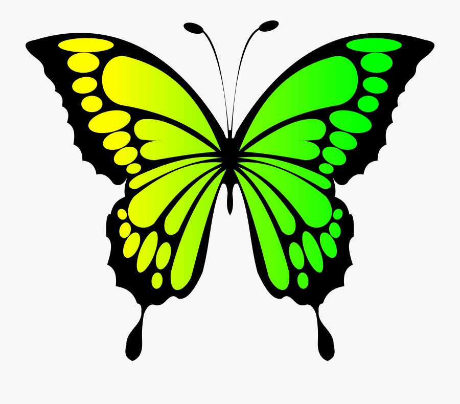 Yellow Clipart Butterfly - Butterfly Clipart Yellow Green, Transparent Clipart
