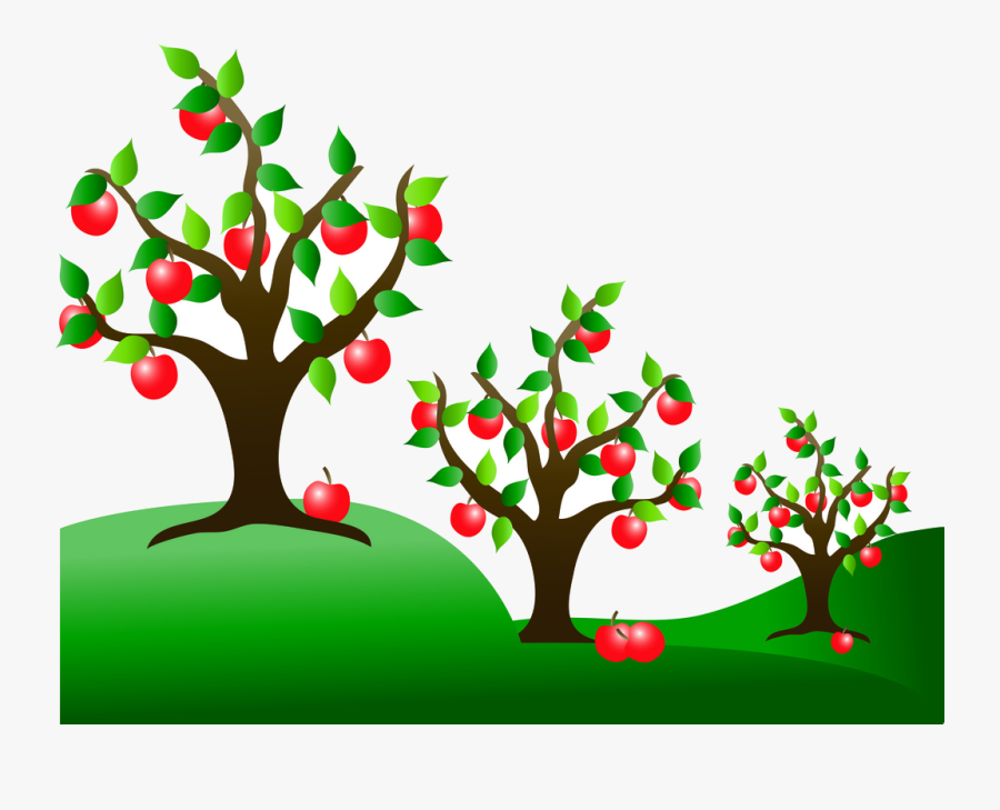 Apple Tree Fruit Trees Clipart Free Cliparts Images - Apple Tree Background Clipart, Transparent Clipart