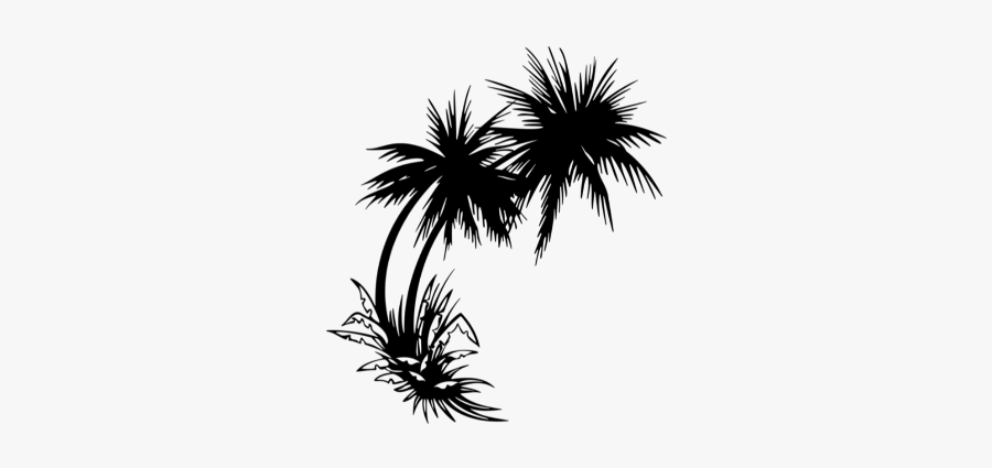Clip Art Palm Trees Sticker Image - Palm Tree Sunset Png, Transparent Clipart