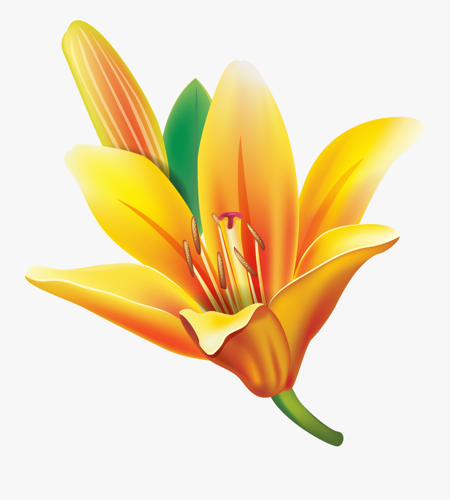 Yellow Bell Flower Png Clipart , Png Download - Yellow Bell Flower Clipart, Transparent Clipart