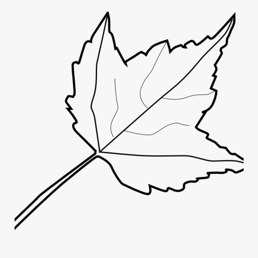 Leaf Outline Images Maple Leaf Outline Clip Art At - Autumn Leaves Clipart Black And White, Transparent Clipart