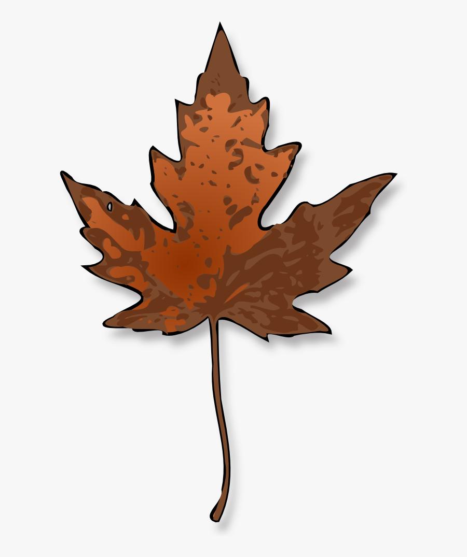 Maple Leaf - Brown Maple Leaf Clipart, Transparent Clipart