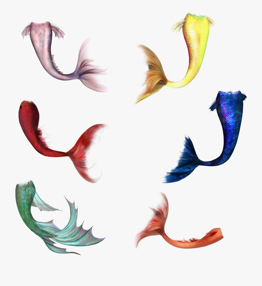 #mermaidtail #fish #mermaid #tail - Mermaid Tail Transparent, Transparent Clipart