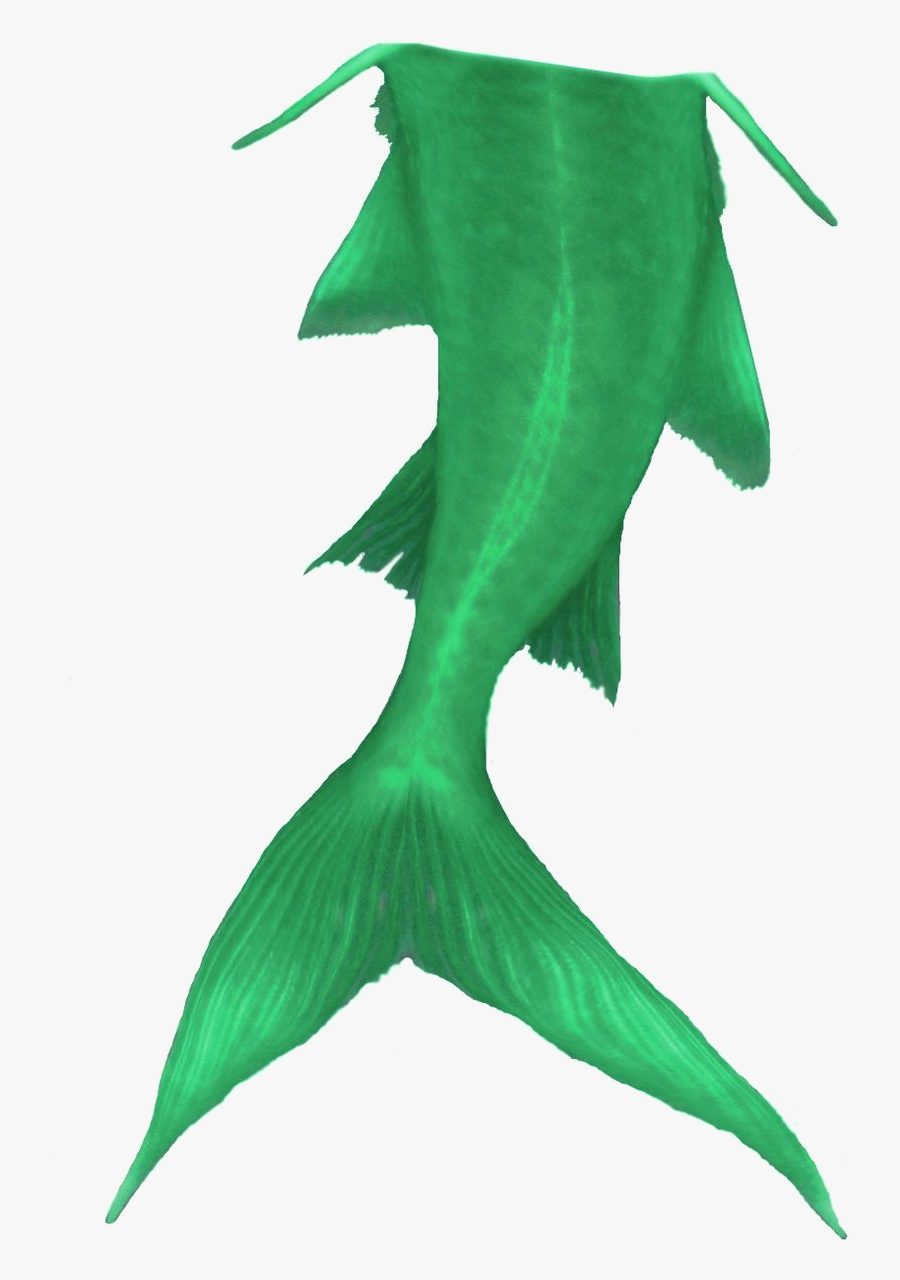 Mermaid Tail Clipart To Download - Small Mermaid Tail Clipart Transparent, Transparent Clipart