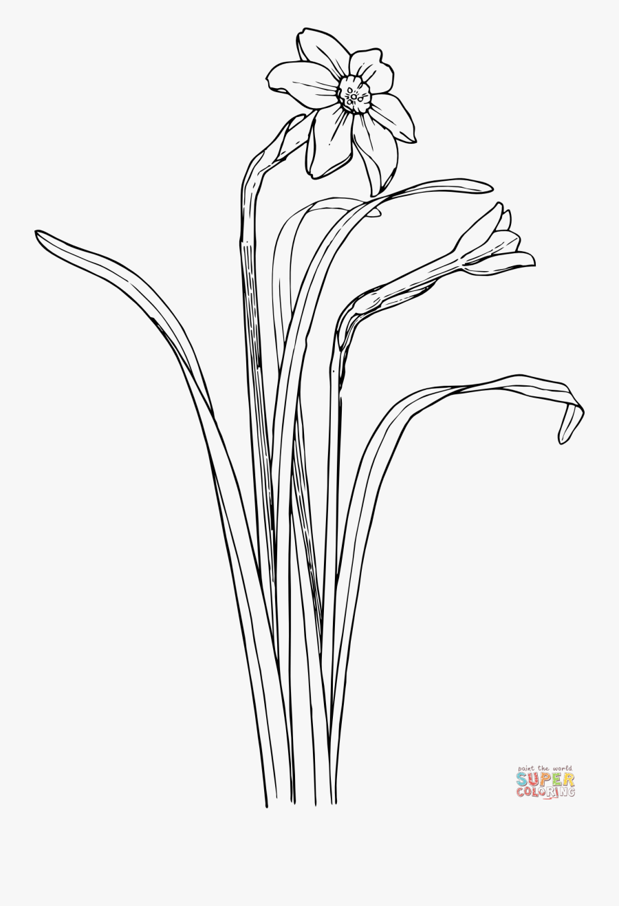 Plant Draw Flower Bush, Transparent Clipart