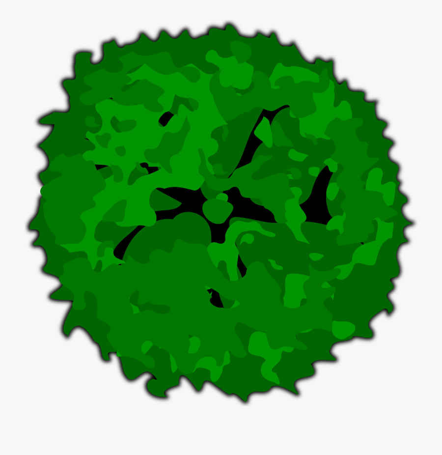 Top Of Tree Clipart - Top View Tree Png, Transparent Clipart