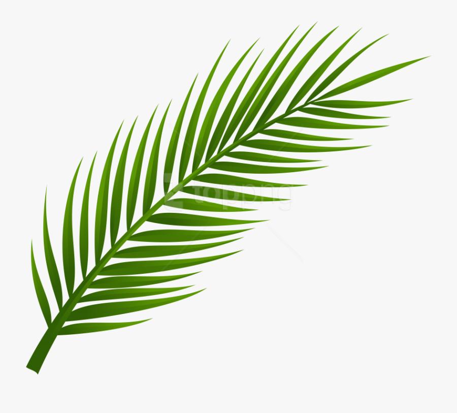 Palm Tree Clipart Gold - Transparent Background Palm Leaf Png, Transparent Clipart