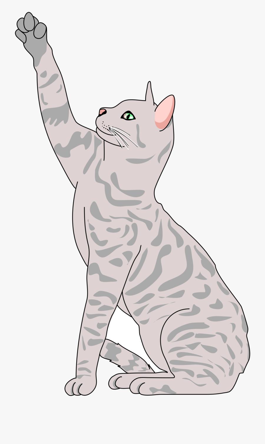Kittens Clipart Playful - Realistic Cat Clip Art, Transparent Clipart