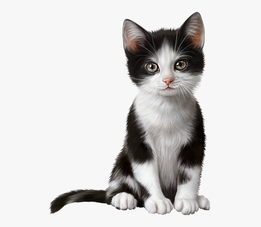 Transparent Cat Clipart - Cat, Transparent Clipart