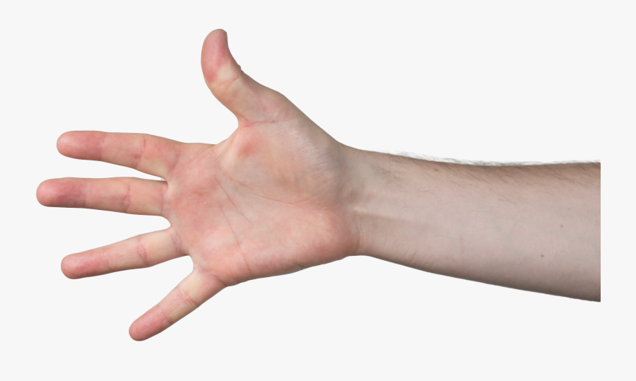 Hand Grabbing Meme Choose from 360000+ hand graphic resources and download in the form of png, eps, ai or psd. hand grabbing meme