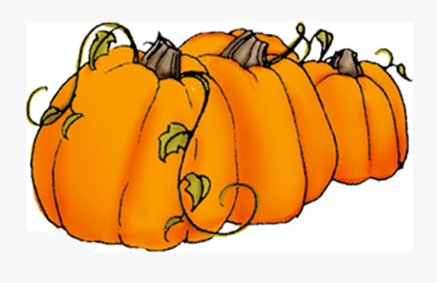 Pumpkin Clipart Vine - Transparent Background Pumpkins ...