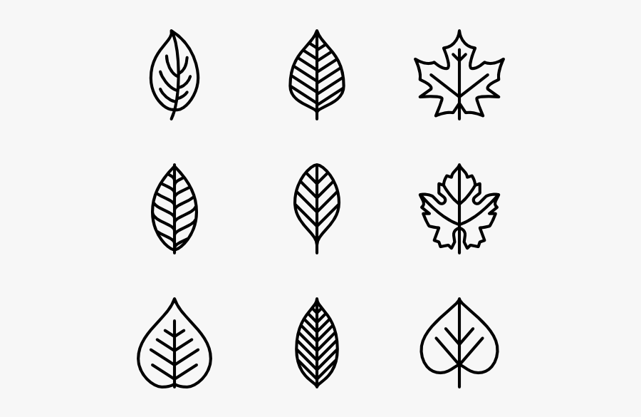 Clip Art Fall Leaf Outline Black And White Png Leaf Icon Free Transparent Clipart Clipartkey