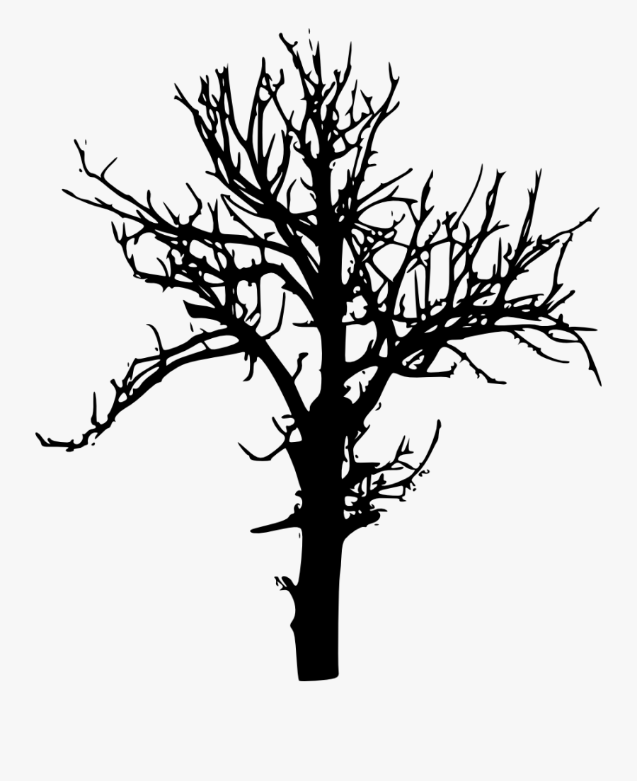 Tree-silhouette - Tree Silhouette Free Transparent Bg, Transparent Clipart