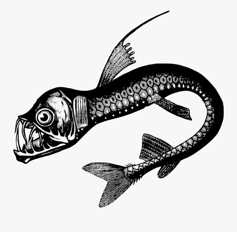 Thumb Image - Deep Sea Creatures Drawings, Transparent Clipart