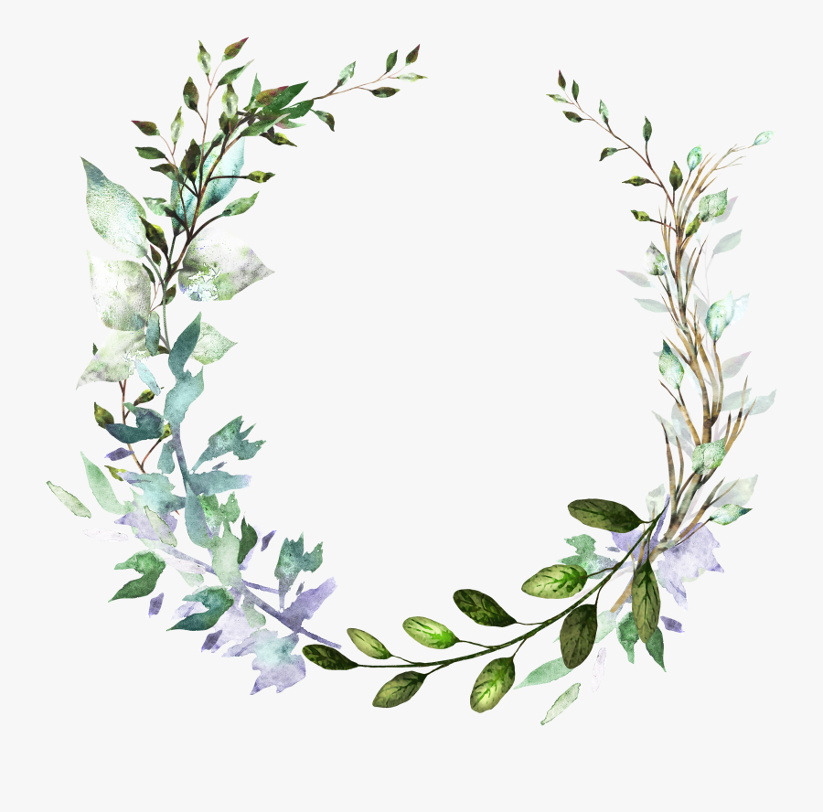 Free Eucalyptus Watercolor Png , Free Transparent Clipart   ClipartKey