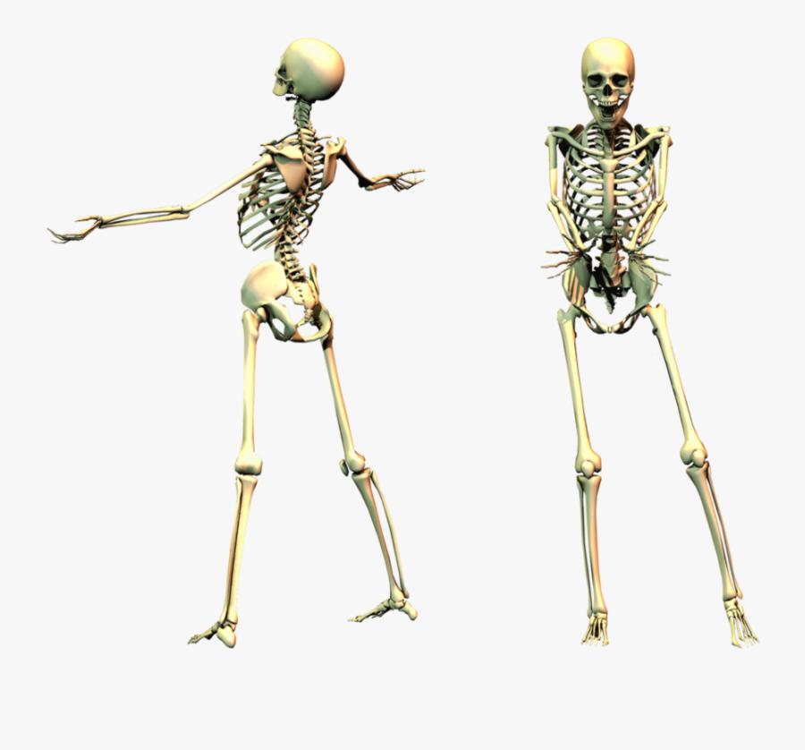 Spooky Skeleton Png, Transparent Clipart