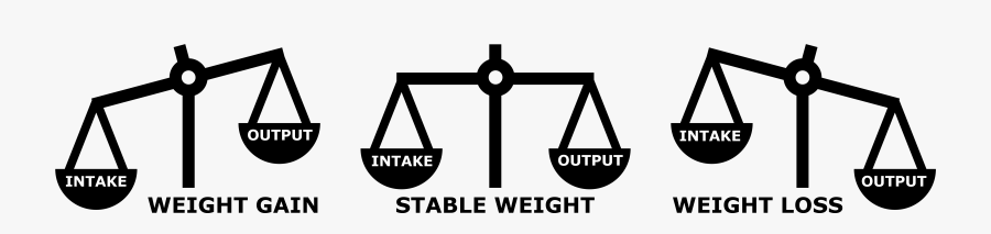 Intake And Output Lose Weight, Transparent Clipart