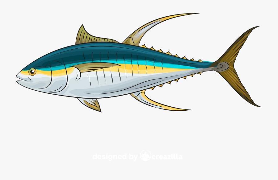 Atlantic Bluefin Tuna , Free Transparent Clipart - ClipartKey (900 x 584 Pixel)